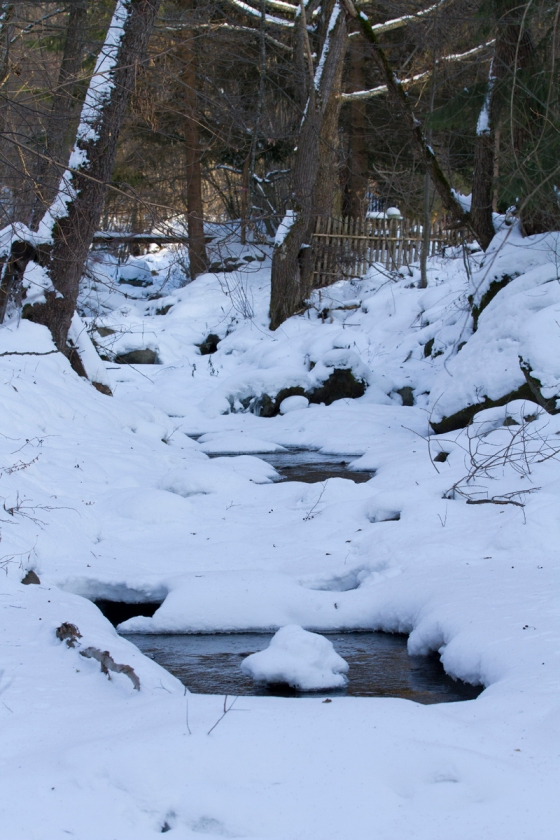 winter-river-2